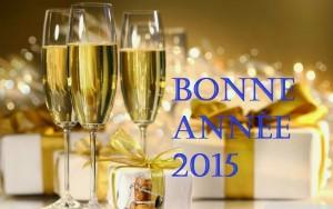 cartes-nouvelle-annee-2015-1